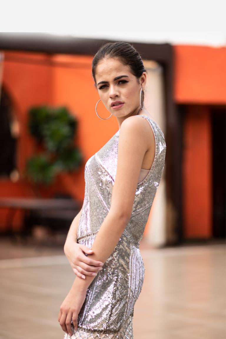 Silver Sequins Dress